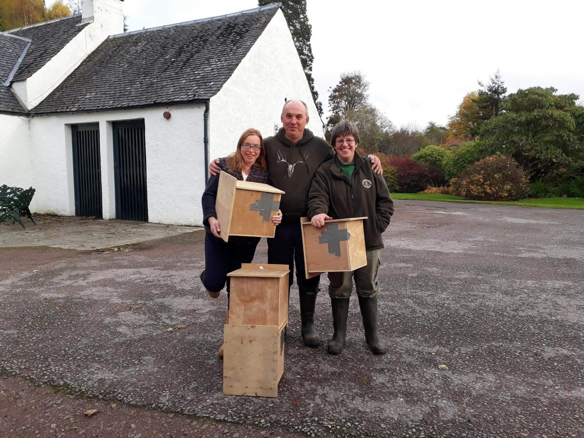 staff with boxes