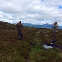Keepers searching in Perthshire