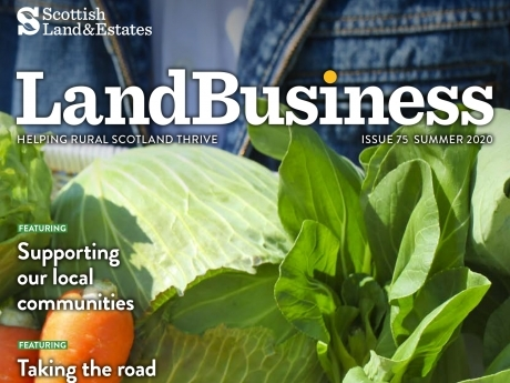 LandBusiness